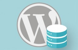 How to Backup & Restore your WordPress-based Website? [2 Videos]