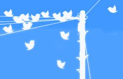 24 things to share on Twitter to get more followers