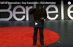 The Art of Innovation by Guy Kawasaki